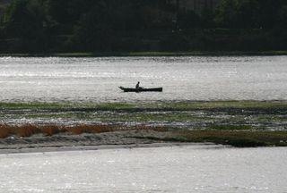 Nile Cruise Rower