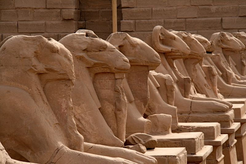 Egypt 212