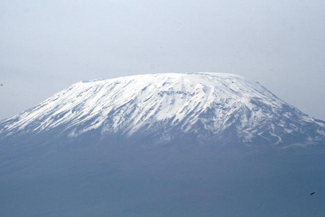 Amboseli_snows_of_kilimanjaro