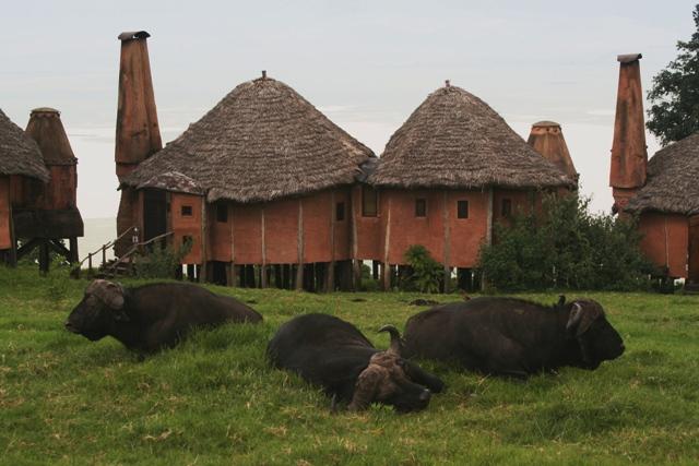 Ngorongoro_crater_lodge